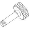 24 - Lister Star Gear & Shaft - 258-30820